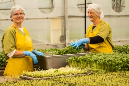 Eatmore Sprouts Workers